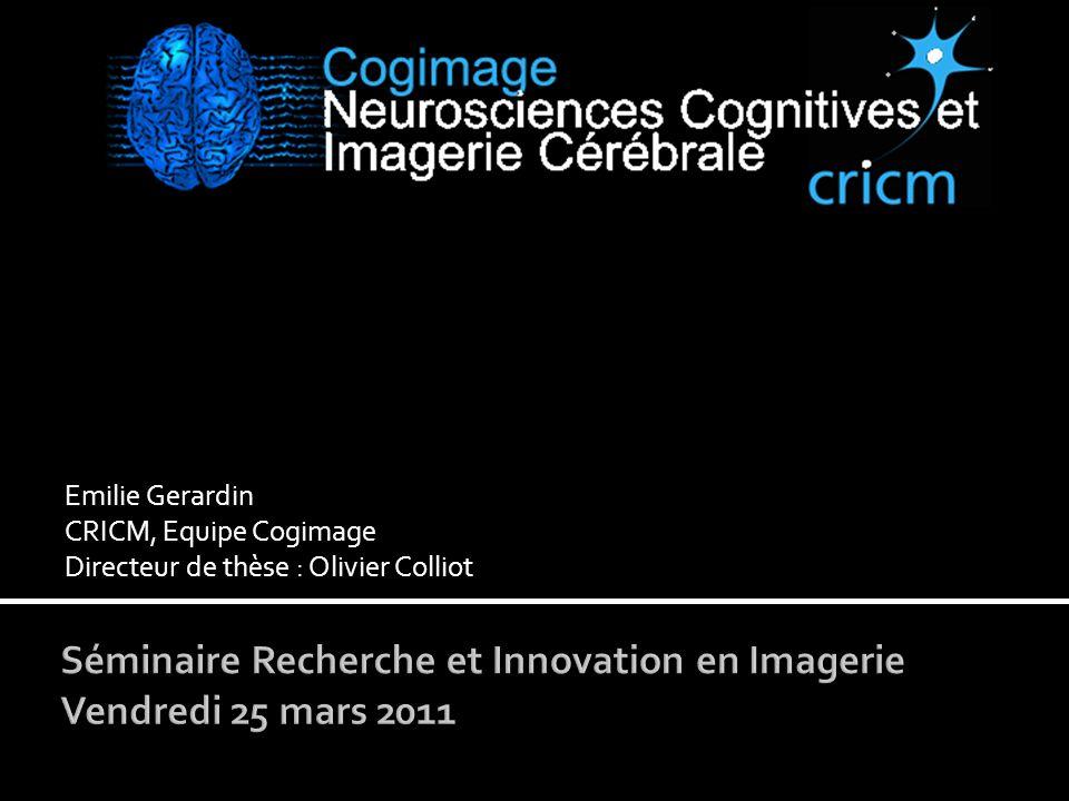 Emilie Gerardin CRICM, Equipe Cogimage Directeur de thèse : Olivier Colliot