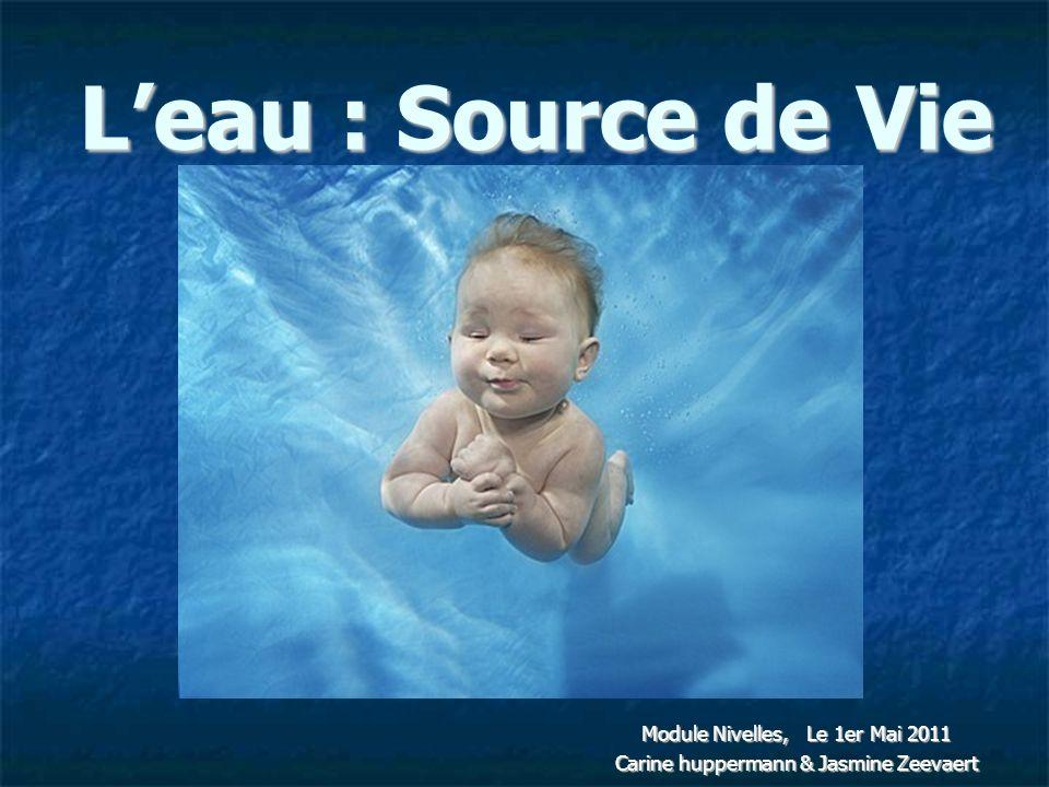 Leau : Source de Vie Module Nivelles, Le 1er Mai 2011 Carine huppermann & Jasmine Zeevaert