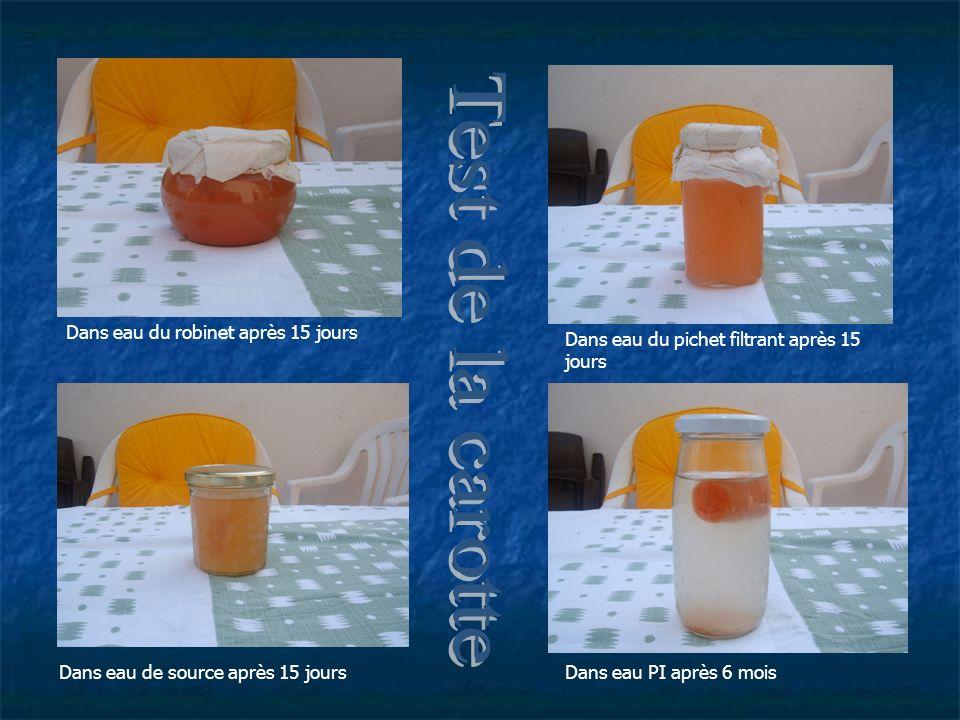 Dans eau du robinet après 15 jours Dans eau du pichet filtrant après 15 jours Dans eau de source après 15 joursDans eau PI après 6 mois