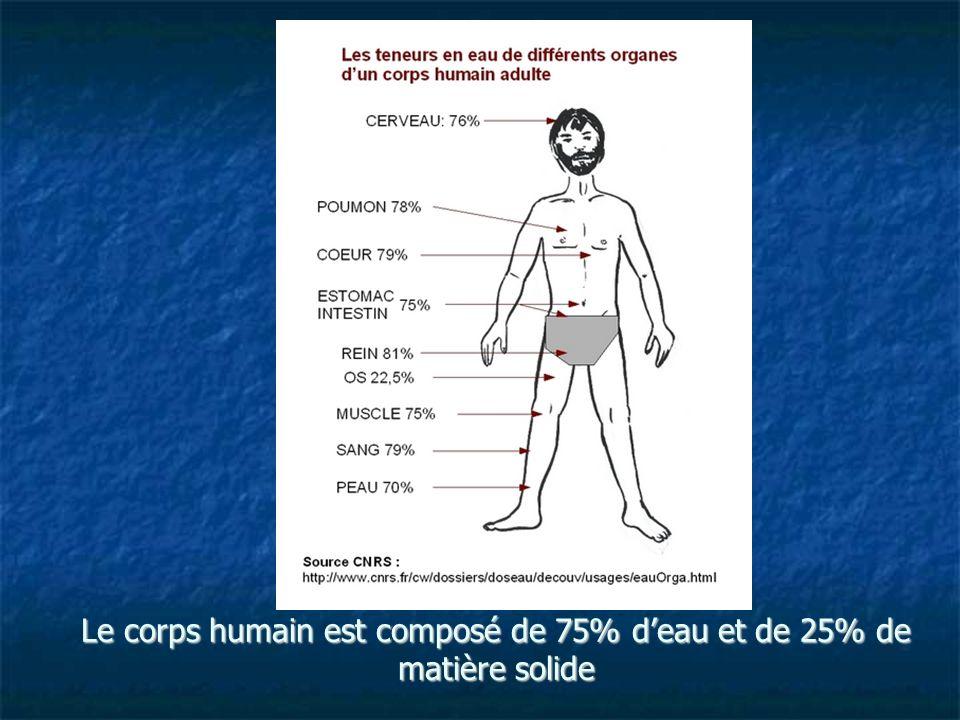 Le corps humain est composé de 75% deau et de 25% de matière solide