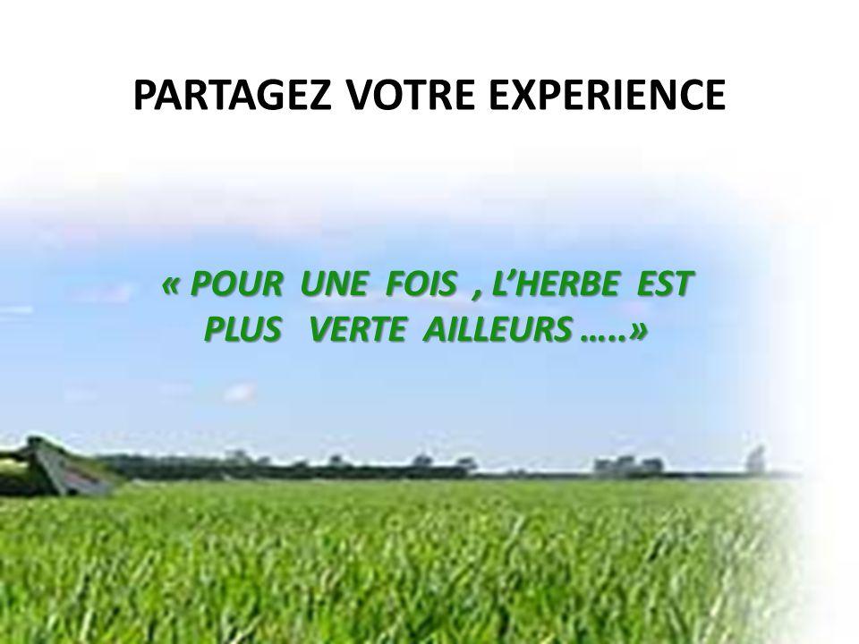 PARTAGEZ VOTRE EXPERIENCE « POUR UNE FOIS, LHERBE EST PLUS VERTE AILLEURS …..»