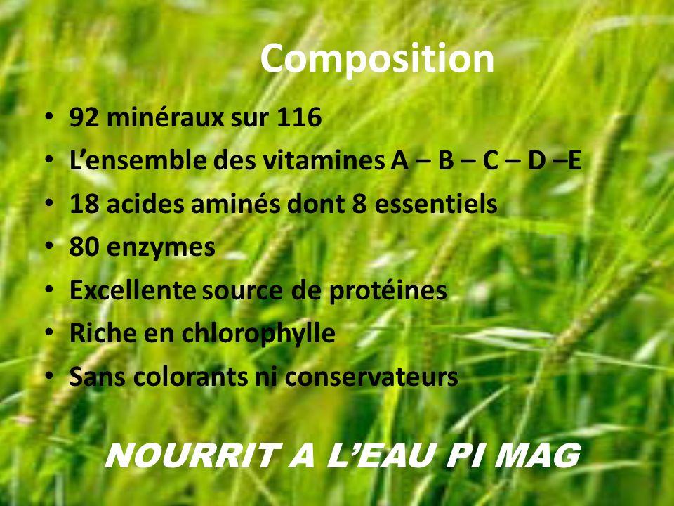 Composition 92 minéraux sur 116 Lensemble des vitamines A – B – C – D –E 18 acides aminés dont 8 essentiels 80 enzymes Excellente source de protéines