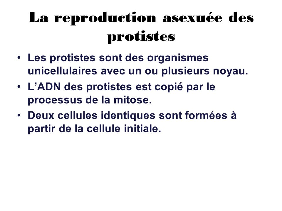 La reproduction asexuée des protistes Les protistes sont des organismes unicellulaires avec un ou plusieurs noyau. LADN des protistes est copié par le