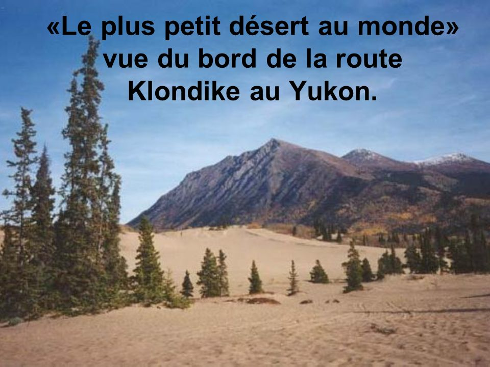 «Le plus petit désert au monde» vue du bord de la route Klondike au Yukon.