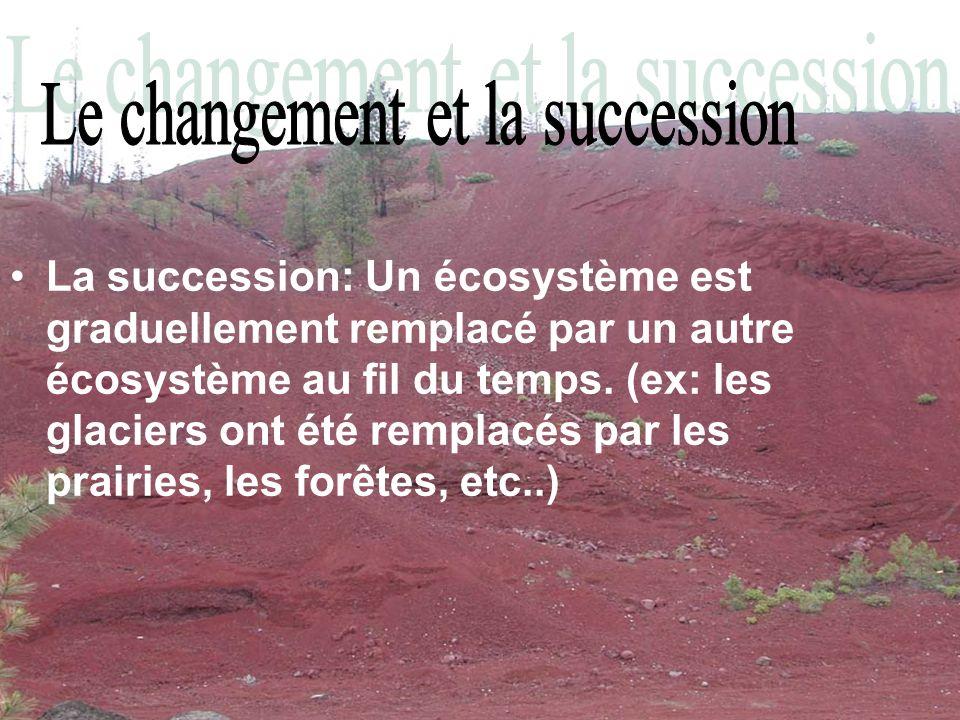 La succession: Un écosystème est graduellement remplacé par un autre écosystème au fil du temps. (ex: les glaciers ont été remplacés par les prairies,