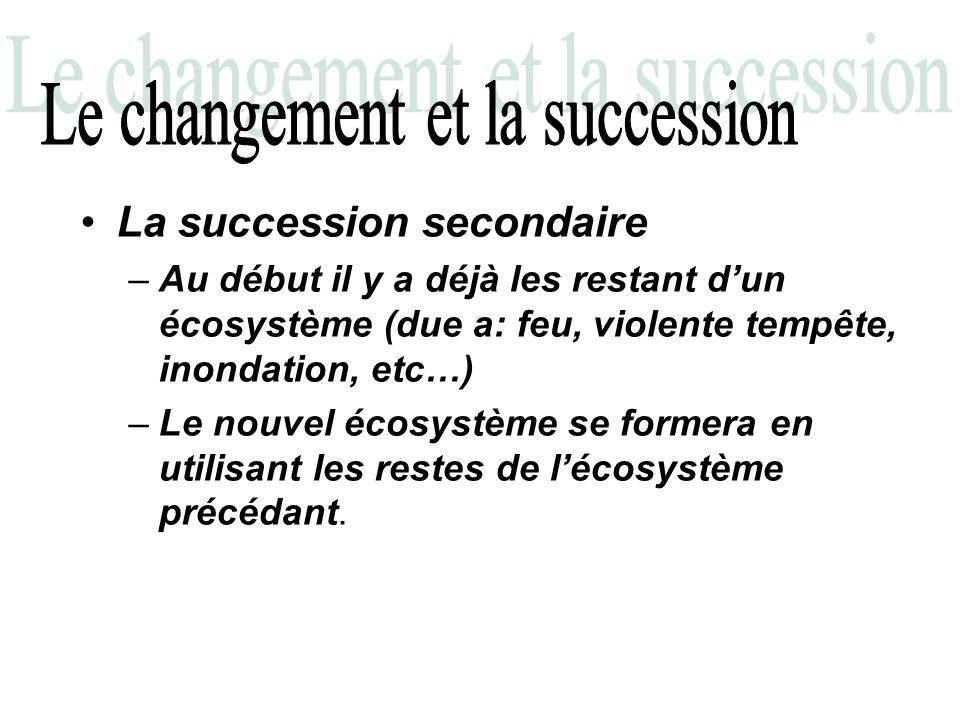 –Au début il y a déjà les restant dun écosystème (due a: feu, violente tempête, inondation, etc…) –Le nouvel écosystème se formera en utilisant les re
