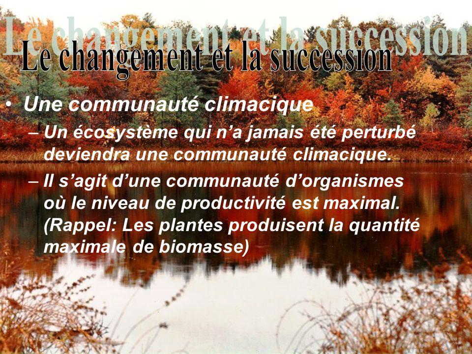 Une communauté climacique –Un écosystème qui na jamais été perturbé deviendra une communauté climacique. –Il sagit dune communauté dorganismes où le n