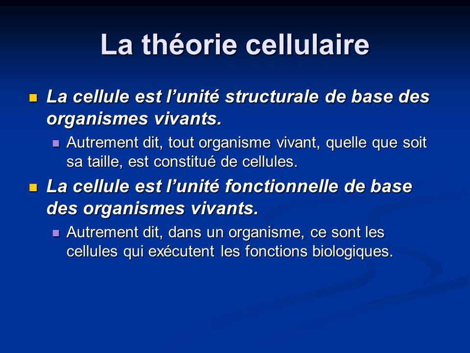 La théorie cellulaire La cellule est lunité structurale de base des organismes vivants. La cellule est lunité structurale de base des organismes vivan