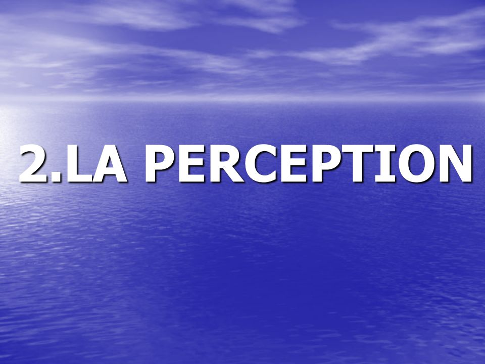 2.LA PERCEPTION