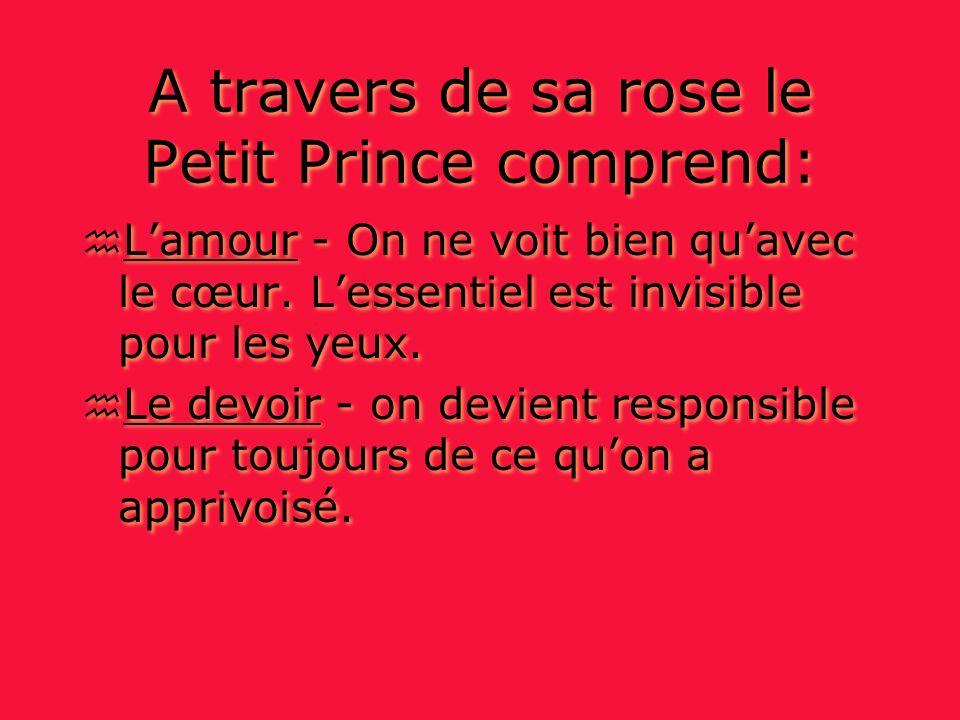 A travers de sa rose le Petit Prince comprend: h Lamour - On ne voit bien quavec le cœur.