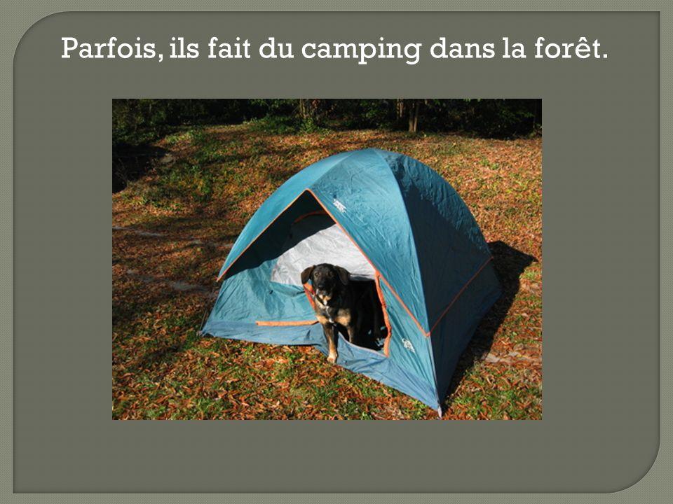 Parfois, ils fait du camping dans la forêt.