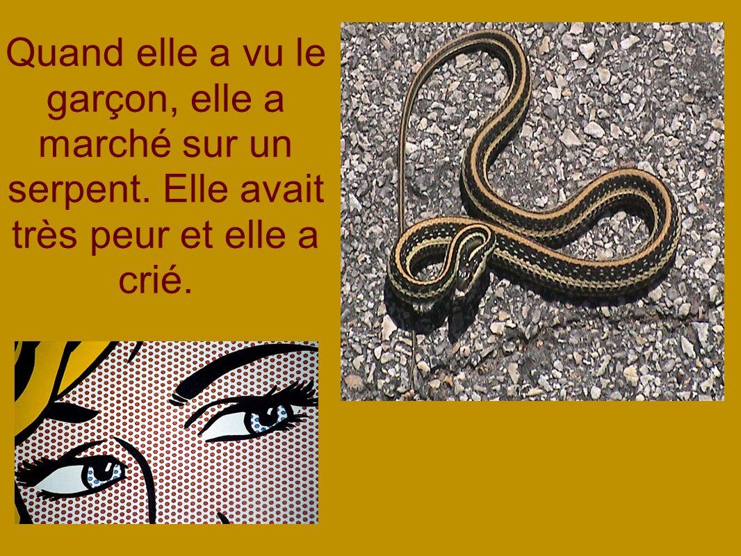 Quand elle a vu le garçon, elle a marché sur un serpent. Elle avait très peur et elle a crié.