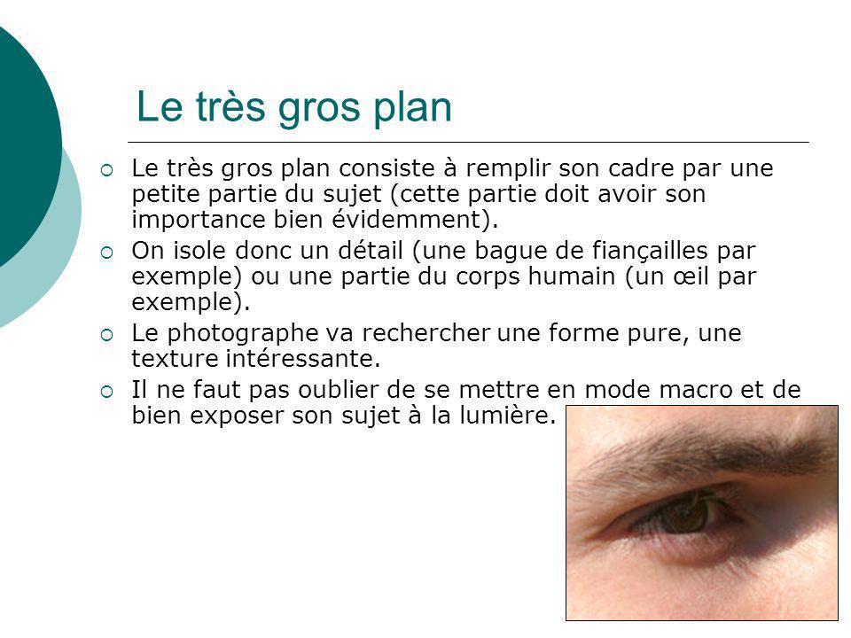 Le très gros plan Le très gros plan consiste à remplir son cadre par une petite partie du sujet (cette partie doit avoir son importance bien évidemmen