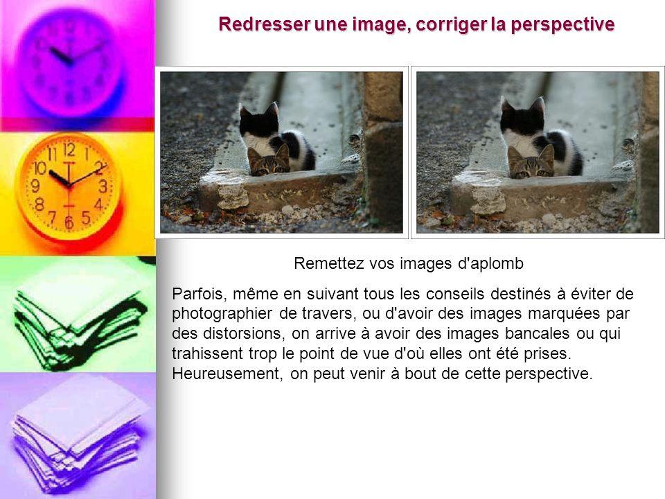 Redresser une image, corriger la perspective Remettez vos images d'aplomb Parfois, même en suivant tous les conseils destinés à éviter de photographie