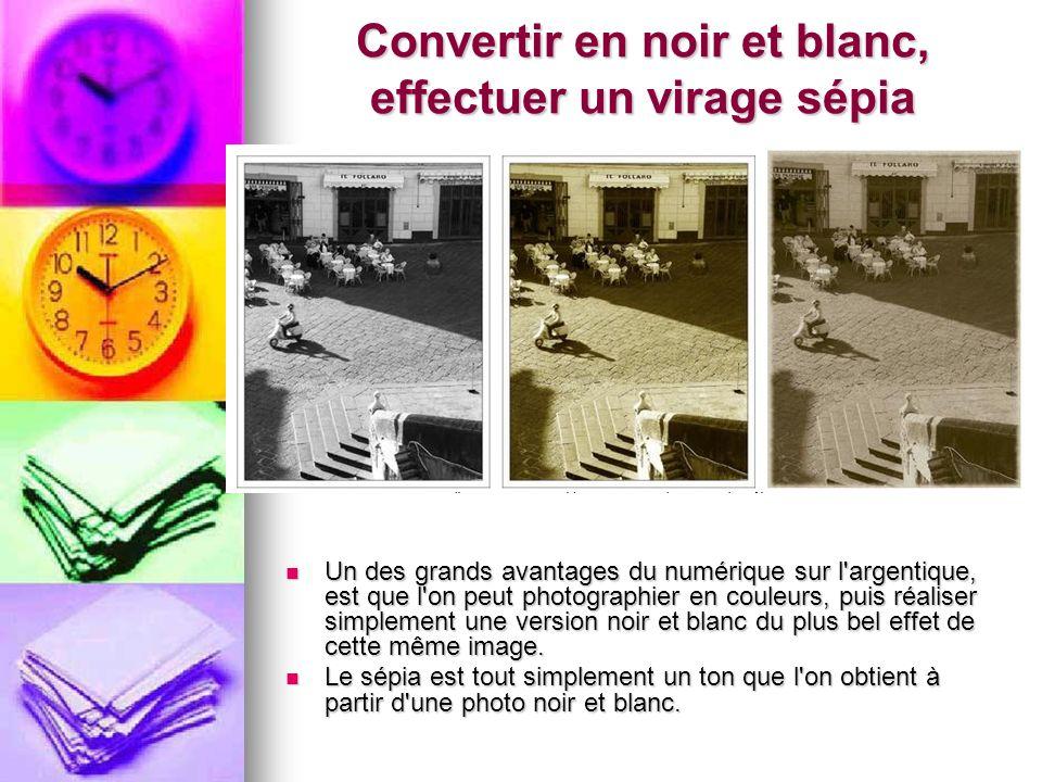 Convertir en noir et blanc, effectuer un virage sépia Un des grands avantages du numérique sur l'argentique, est que l'on peut photographier en couleu