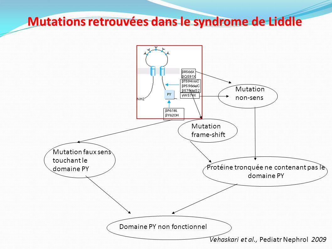 Hyperactivation du ENaC dans le syndrome de Liddle Augmentation du nombre de canaux par diminution de leur dégradation => mutation gain de fonction Rotin, BMC Biochem.