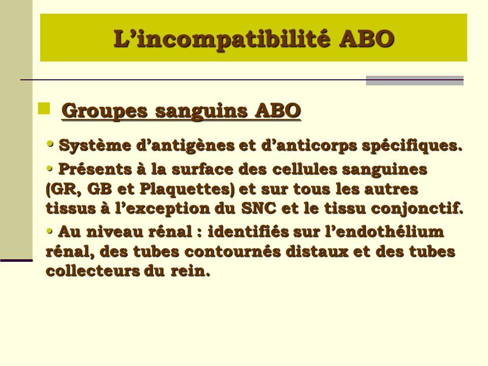 Groupes sanguins ABO Groupes sanguins ABO Système dantigènes et danticorps spécifiques. Système dantigènes et danticorps spécifiques. Présents à la su