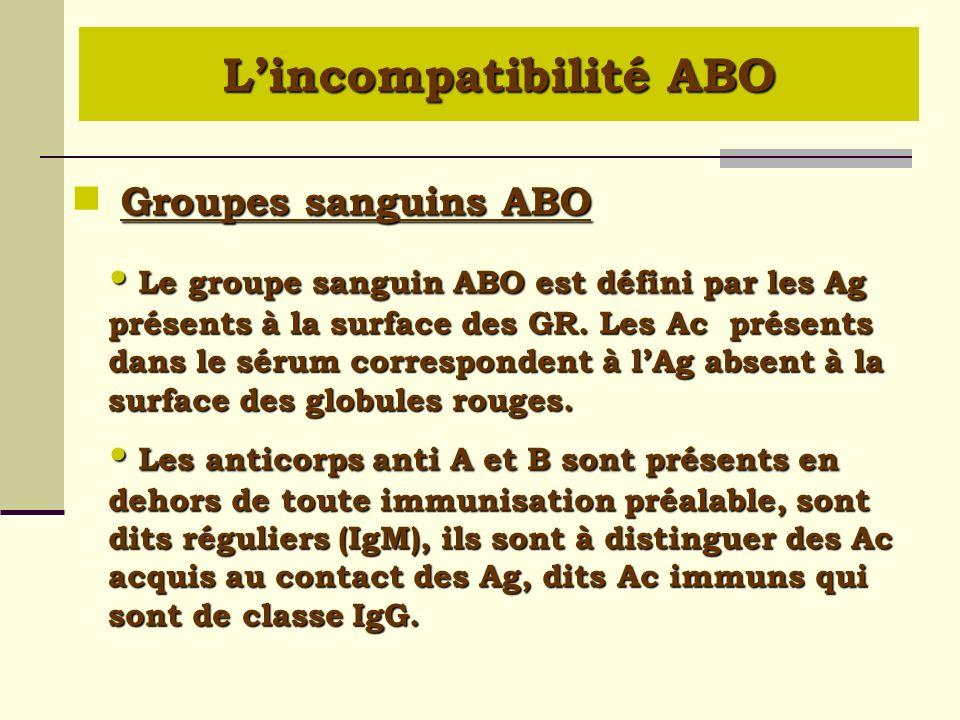 Le groupe sanguin ABO est défini par les Ag présents à la surface des GR. Les Ac présents dans le sérum correspondent à lAg absent à la surface des gl