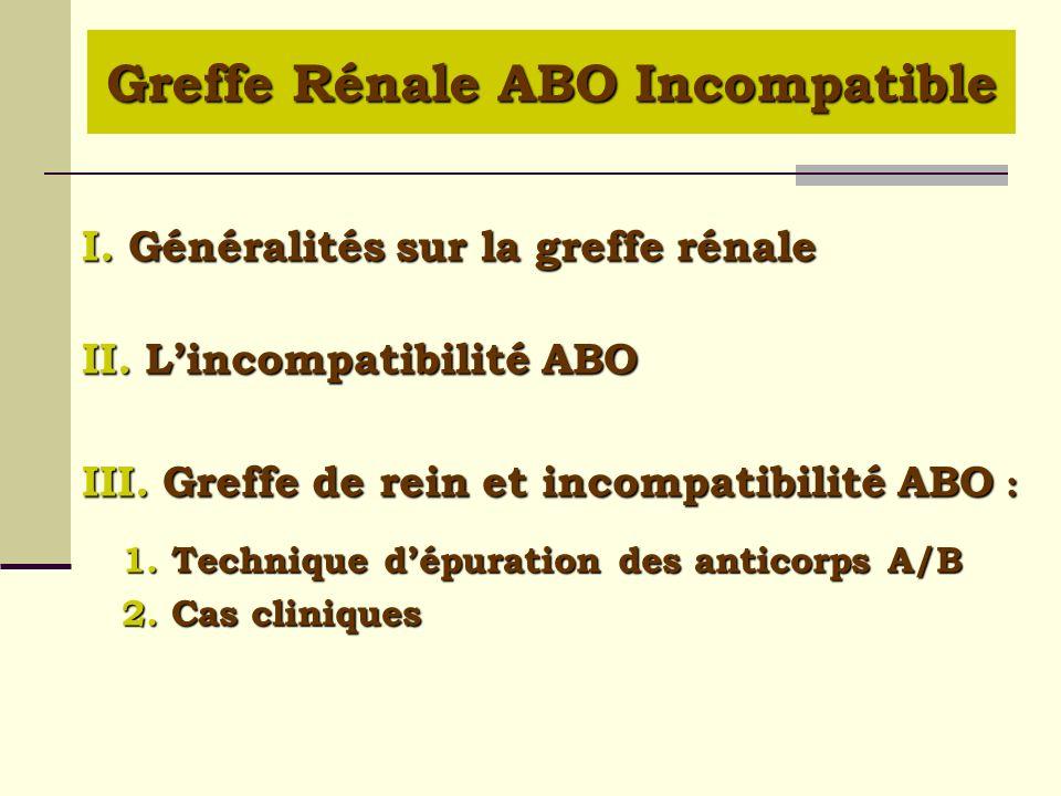 I. Généralités sur la greffe rénale II. Lincompatibilité ABO III. Greffe de rein et incompatibilité ABO : 1. Technique dépuration des anticorps A/B 2.