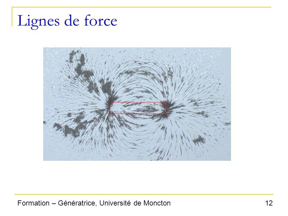 12Formation – Génératrice, Université de Moncton Lignes de force