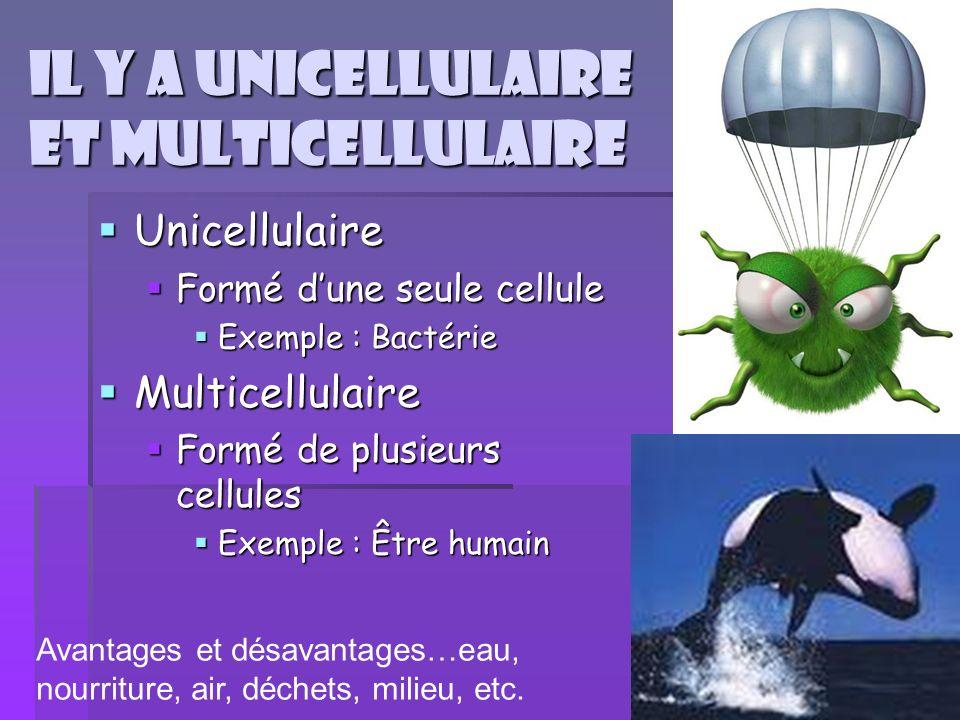Il y a unicellulaire et multicellulaire Unicellulaire Unicellulaire Formé dune seule cellule Formé dune seule cellule Exemple : Bactérie Exemple : Bac