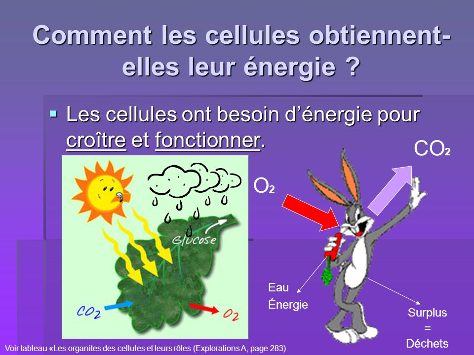 Comment les cellules obtiennent- elles leur énergie ? Les cellules ont besoin dénergie pour croître et fonctionner. Les cellules ont besoin dénergie p