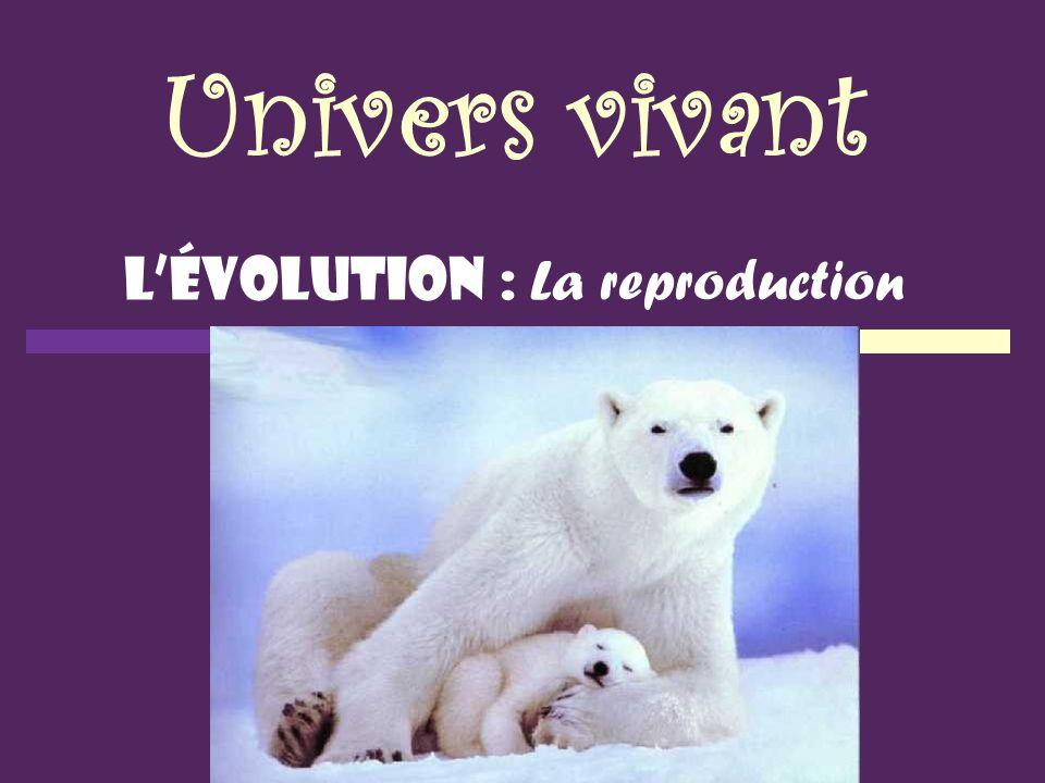 Univers vivant Lévolution : La reproduction