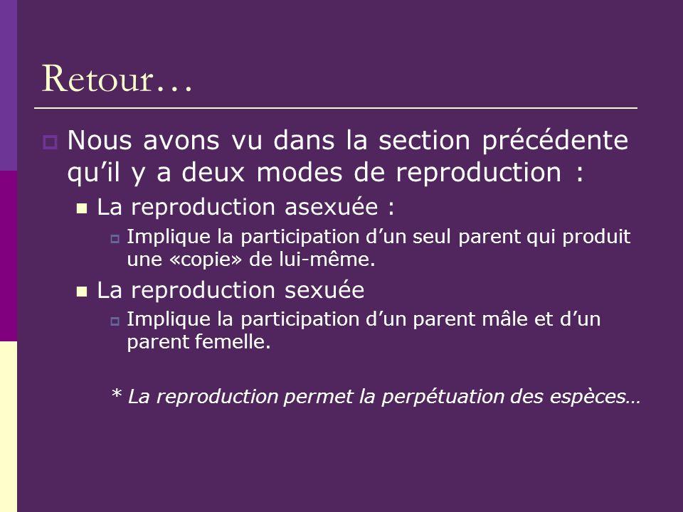 Retour… Nous avons vu dans la section précédente quil y a deux modes de reproduction : La reproduction asexuée : Implique la participation dun seul pa
