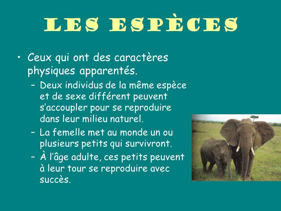 Les espèces Ceux qui ont des caractères physiques apparentés. –Deux individus de la même espèce et de sexe différent peuvent saccoupler pour se reprod