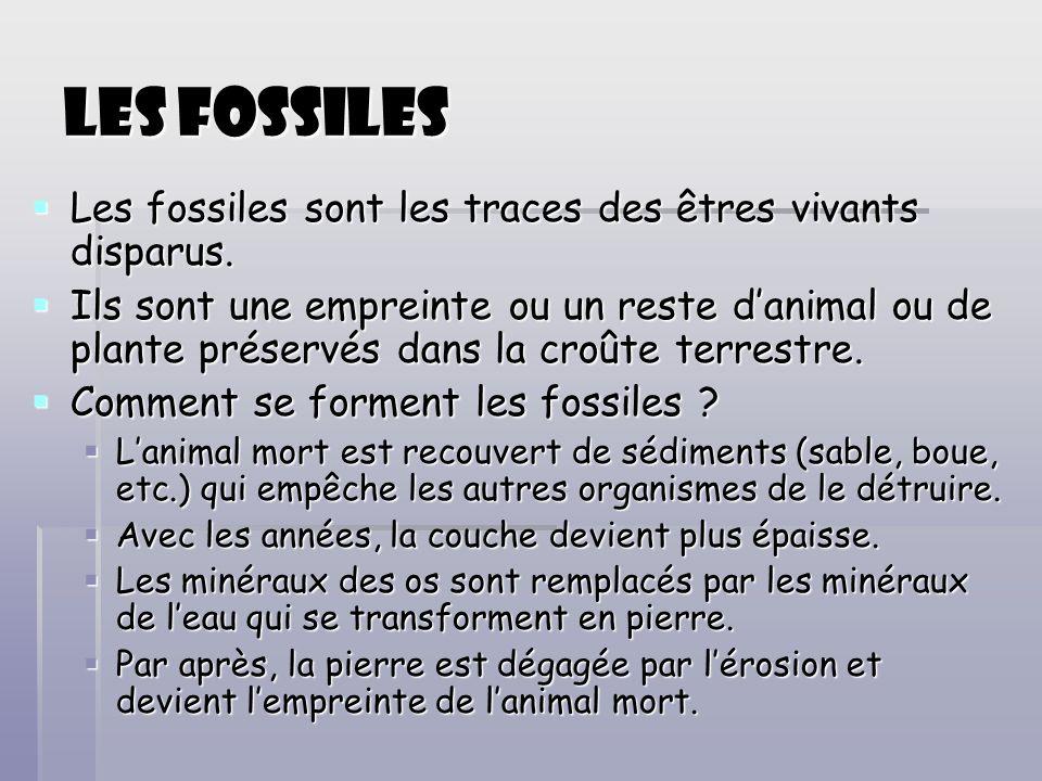 Les fossiles Les fossiles sont les traces des êtres vivants disparus. Les fossiles sont les traces des êtres vivants disparus. Ils sont une empreinte