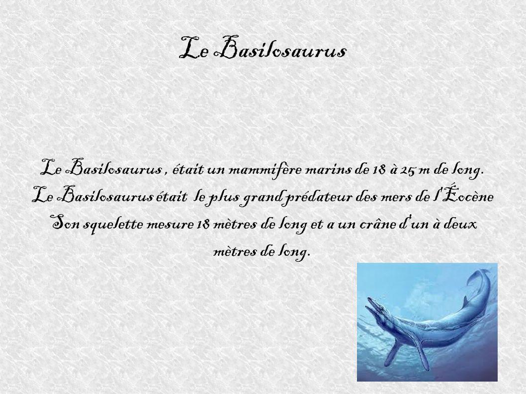Le Basilosaurus Le Basilosaurus, était un mammifère marins de 18 à 25 m de long. Le Basilosaurus était le plus grand prédateur des mers de l'Éocène So
