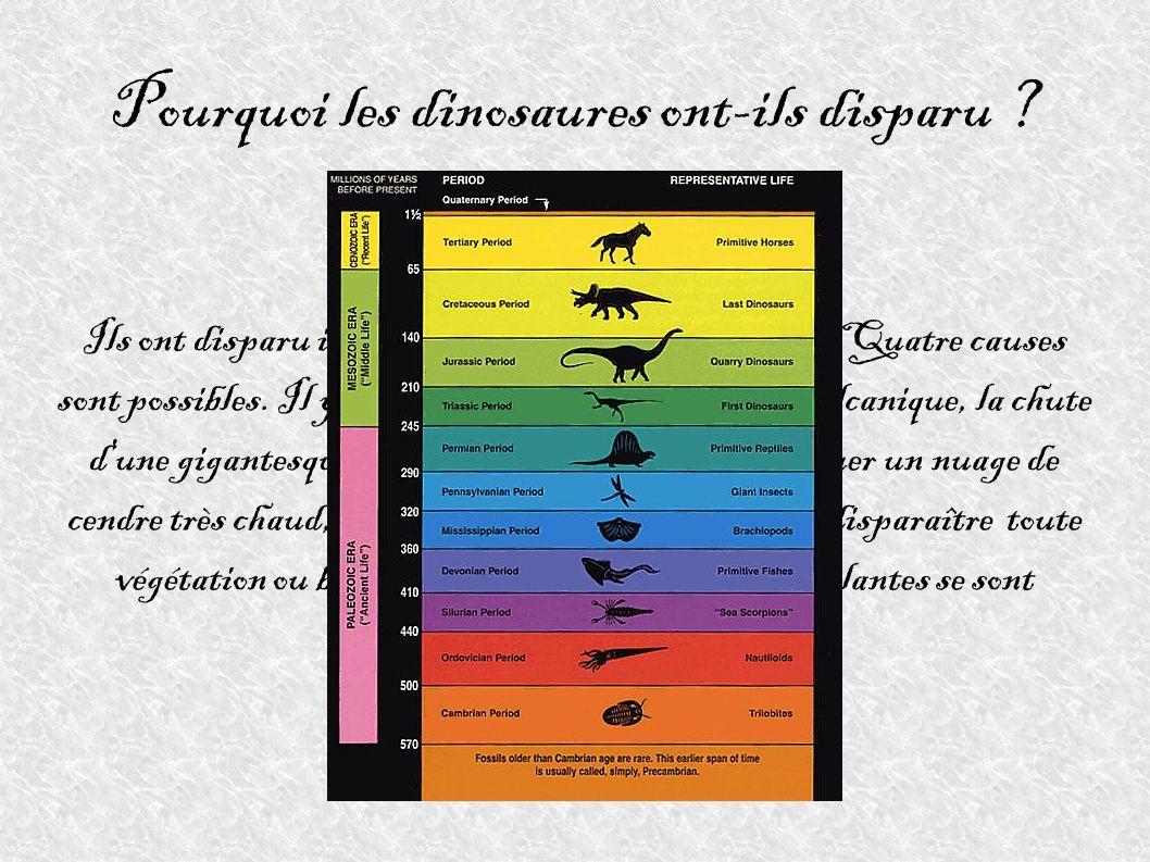 Pourquoi les dinosaures ont-ils disparu ? Ils ont disparu il y a environs 65 millions d'années. Quatre causes sont possibles. Il y aurait pu y avoir u