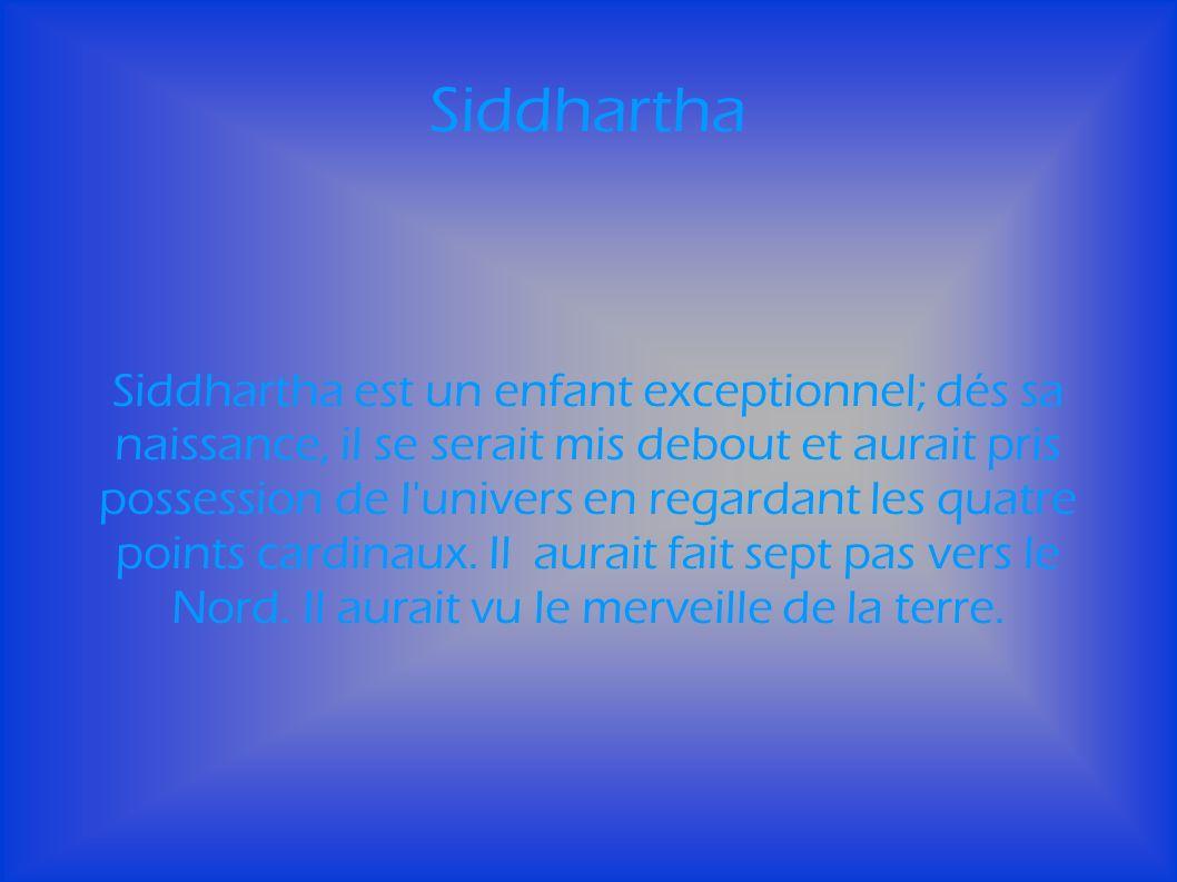 Siddhartha est un enfant exceptionnel; dés sa naissance, il se serait mis debout et aurait pris possession de l univers en regardant les quatre points cardinaux.