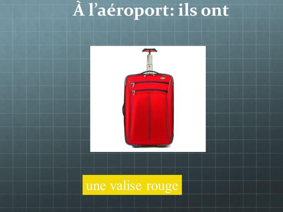 À laéroport: ils ont des bagages Jai trop de bagages!