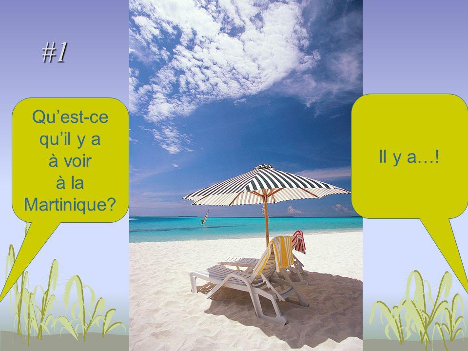 #1 Quest-ce quil y a à voir à la Martinique Il y a…!