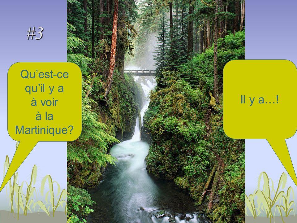#3 Quest-ce quil y a à voir à la Martinique Il y a…!