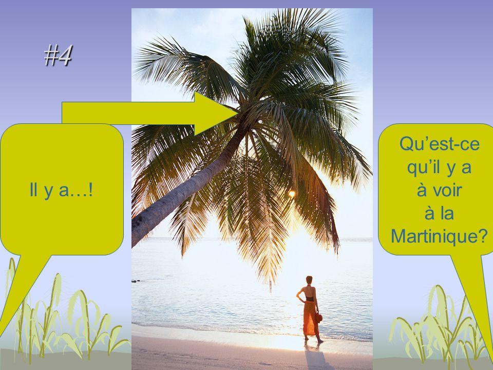 #4 Quest-ce quil y a à voir à la Martinique Il y a…!