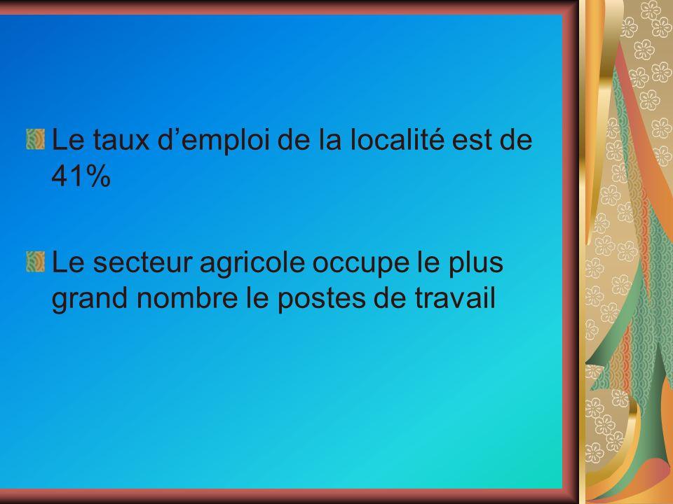 Le taux demploi de la localité est de 41% Le secteur agricole occupe le plus grand nombre le postes de travail