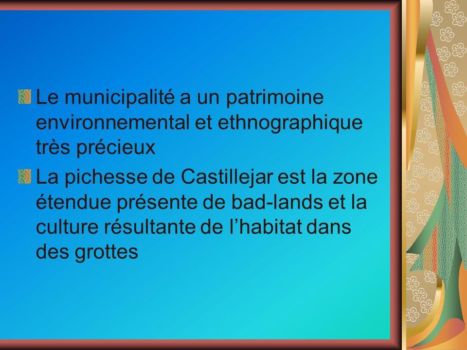 Le municipalité a un patrimoine environnemental et ethnographique très précieux La pichesse de Castillejar est la zone étendue présente de bad-lands e