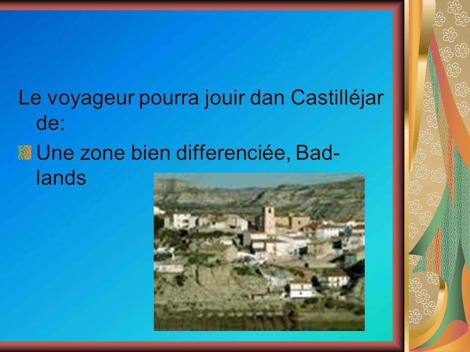 Le voyageur pourra jouir dan Castilléjar de: Une zone bien differenciée, Bad- lands