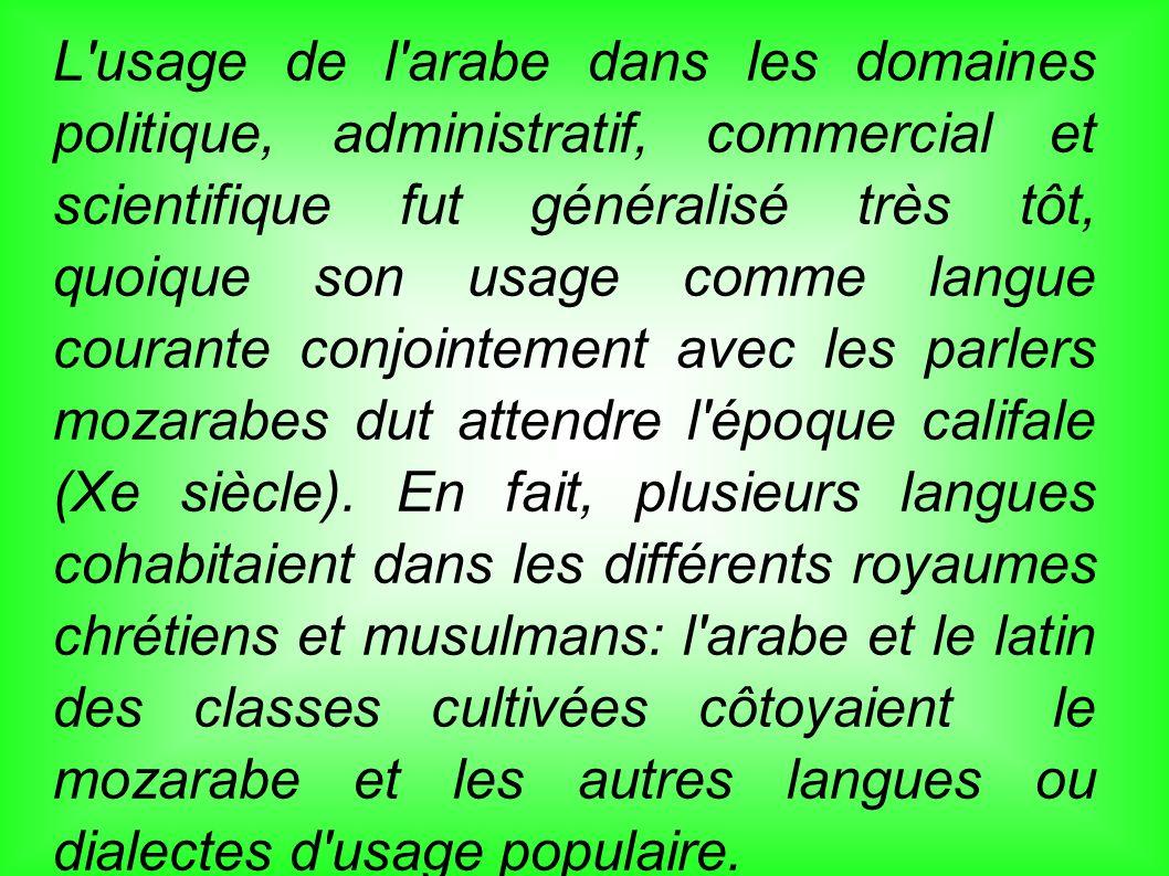 L'usage de l'arabe dans les domaines politique, administratif, commercial et scientifique fut généralisé très tôt, quoique son usage comme langue cour