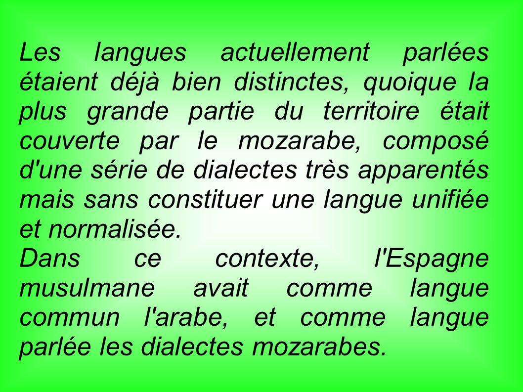 Les langues actuellement parlées étaient déjà bien distinctes, quoique la plus grande partie du territoire était couverte par le mozarabe, composé d'u