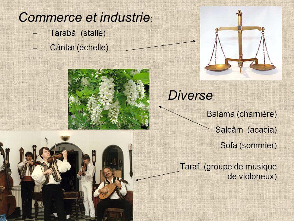Commerce et industrie : –Tarabă (stalle) –Cântar (échelle) Diverse : Balama (charnière) Salcâm (acacia) Sofa (sommier) Taraf (groupe de musique de vio