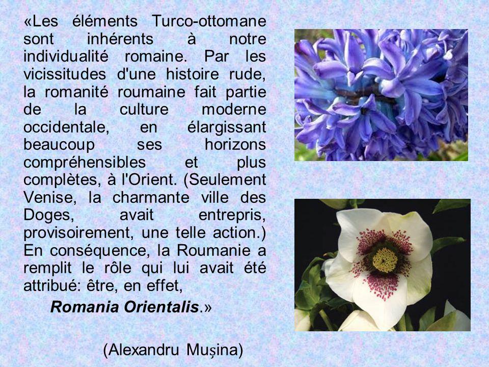 «Les éléments Turco-ottomane sont inhérents à notre individualité romaine. Par les vicissitudes d'une histoire rude, la romanité roumaine fait partie