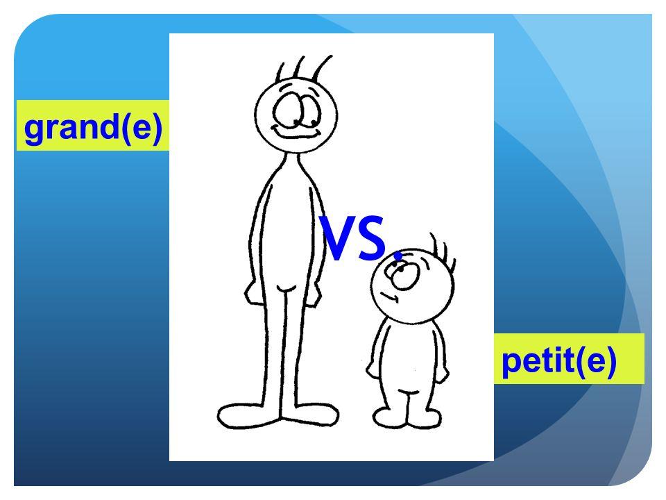 grand(e) VS. petit(e)
