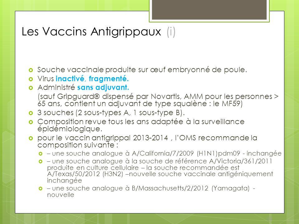 19 Les Vaccins Antigrippaux (i) Souche vaccinale produite sur œuf embryonné de poule. Virus inactivé, fragmenté. Administré sans adjuvant. (sauf Gripg