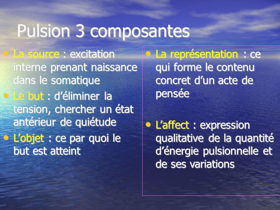 Pulsion 3 composantes La source : excitation interne prenant naissance dans le somatique La source : excitation interne prenant naissance dans le soma