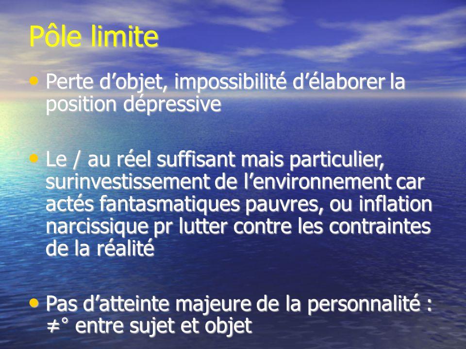 Pôle limite Perte dobjet, impossibilité délaborer la position dépressive Perte dobjet, impossibilité délaborer la position dépressive Le / au réel suf