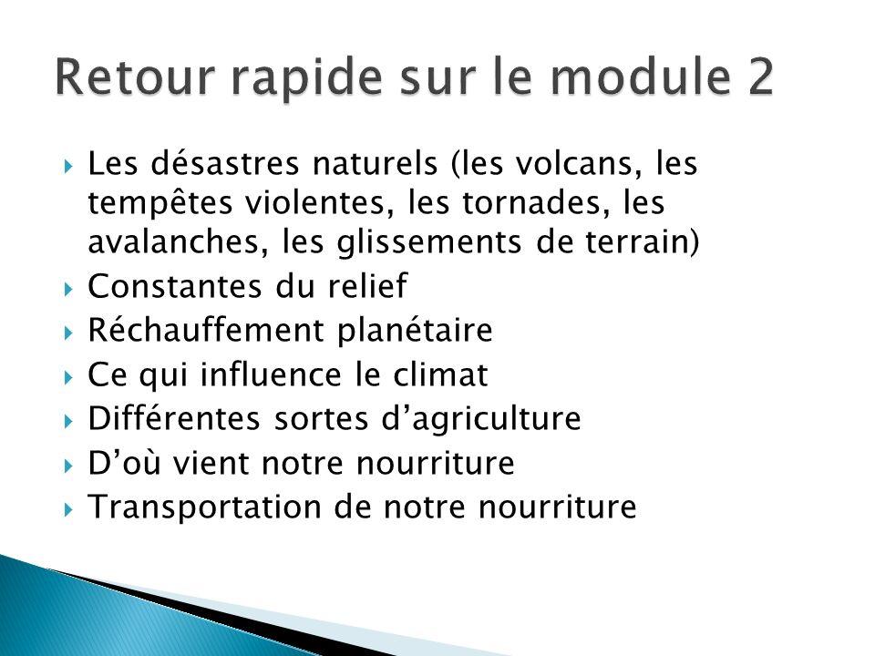 Les désastres naturels (les volcans, les tempêtes violentes, les tornades, les avalanches, les glissements de terrain) Constantes du relief Réchauffem