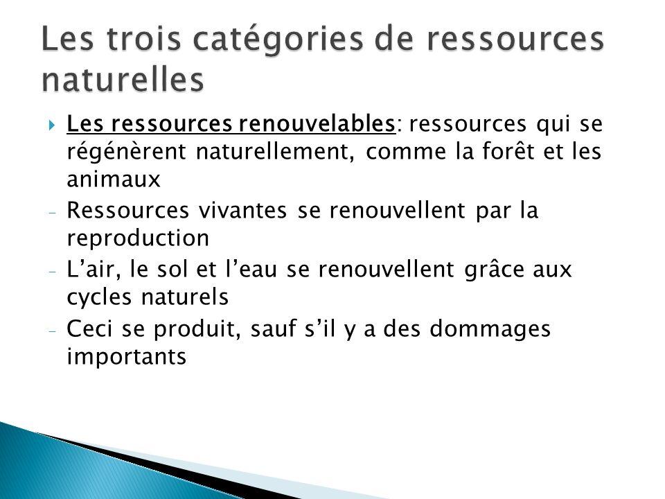 Les ressources renouvelables: ressources qui se régénèrent naturellement, comme la forêt et les animaux - Ressources vivantes se renouvellent par la reproduction - Lair, le sol et leau se renouvellent grâce aux cycles naturels - Ceci se produit, sauf sil y a des dommages importants